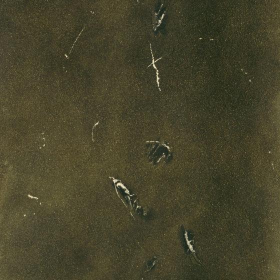 Flililili, acrylique et terre, 100×80 cm