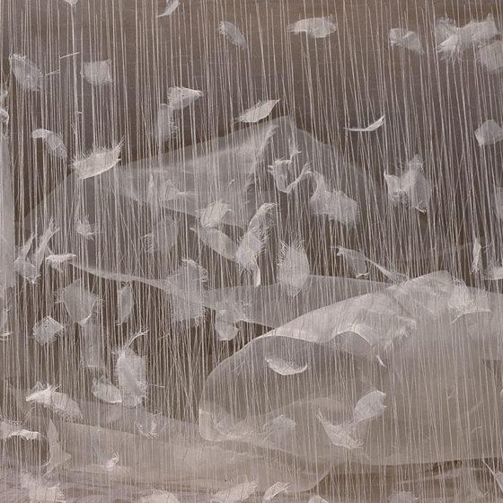 Pollaio (détail) bois, étoffe et fils, 42x60x20 cm